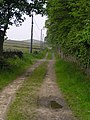 Pit Lane Denholme, on Millennium Way - geograph.org.uk - 458755.jpg