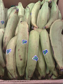 "Large plaintains labeled for sale with stickers reading ""BANACOL #4235 C O L O M B I A"", sold in Norway in what appears to be a cardboard box."