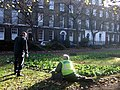 Planting out, Compton Terrace - geograph.org.uk - 614921.jpg