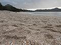 Playa Conchal sand.jpg