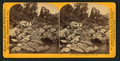 Pluton Creek, Sonoma County, California, by Thomas Houseworth & Co..png