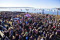 Polar Bear Swim 2016 (24032500411).jpg