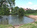 Pond at Lower Woodhouse - geograph.org.uk - 449694.jpg