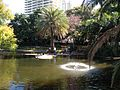 Pond in City Botanic Gardens, Brisbane 02.JPG