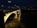 Pont des Catalans de nuit 02.jpg