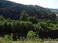 Potštejn - vrch Velešov s pozůstatky hradu a lanové dráhy hraběte Chamaré (pohled z hradu Potštejna).jpg