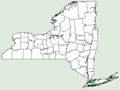 Prenanthes × mainensis NY-dist-map.png