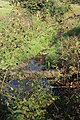 Prenton Brook from Landican Lane 1.jpg