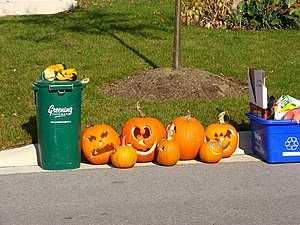 English: Jack-o'-lanterns made of carved pumpk...