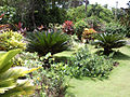 Punta Cana Just Safari - Amazing Tropical garden, Countryside House.jpg