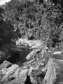 Queensland State Archives 1220 The Gorge Freshwater Valley Cairns District c 1935.png