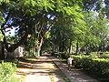 Rajsahi Park.JPG