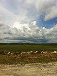Ream, Cambodia - panoramio (41).jpg