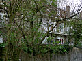 Rear view of livinghouses with gardens and balconies in Amsterdam-Oost, Spring 2013.jpg