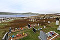 Red Bay Labrador 09.jpg