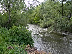 Resava river near Stenjevac02.JPG