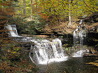 A double cascade falls over several layers of rock at left. A tributary enters the stream from the opposite bank in the form of a smaller waterfall. Conifer saplings are visible on the bank of the creek, which is surrounded by a mixed forest with a variety of autumn colors. The newly fallen leaves cover the rocks on the creek bank and are visible floating in the water.