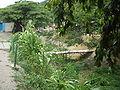 RioMacarao2004-8-27.jpg