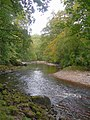 River Ayr - geograph.org.uk - 573935.jpg