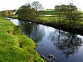 River Hodder between Slaidburn and Newton - geograph.org.uk - 1539774.jpg