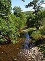 River Teme - the wanderer. - geograph.org.uk - 233761.jpg