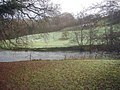 River Teme near Bringewood Forge - geograph.org.uk - 1306981.jpg