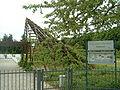 Rosarium Hattersheim 08 003.jpg