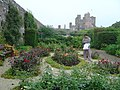Rose Garden of the Castle of Mey - geograph.org.uk - 259305.jpg