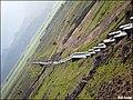 Rotated Landscape - panoramio.jpg