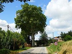 Rouvenac, Aude, France.jpg