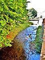 Ruisseau, le Rimbach. (3).jpg