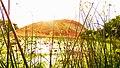 SAMANAR HILLS FROM LAKE.jpg