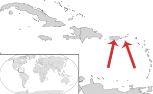 Saint Croix macaw - Red arrows indicate locations of subfossil finds at  the Caribbean islands of Saint Croix and Puerto Rico