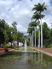 State Gardens in Saint-Denis, Réunion Island.