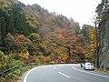 Saitama Pref. Road 210.JPG