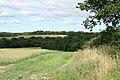 Sampford Courtenay, near Wood - geograph.org.uk - 209841.jpg
