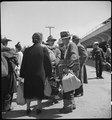 San Bruno, California. These families of Japanese ancestry have just arrived at the Assembly center . . . - NARA - 537481.tif