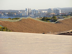Cronulla sand dunes - Looking south at Cronulla from the dunes