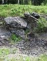 Sandorite lamprophyre with xenoliths (Sandor Dike, Neoarchean, 2.703 Ga; Route 17 roadcut northeast of Wasp Lake & north of Wawa, Ontario, Canada) 3 (48341312056).jpg