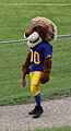 Saskatoon Topper Mascot for the Hilltops.JPG