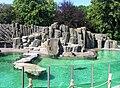 Seal's exposition 2, Prague zoo.jpg