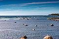 Seascape Newfoundland (40469409415).jpg