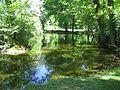 Seelwig Wendland Teich 1.jpg