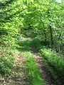 Sentier pédagogique La Chabanne - 2.jpg