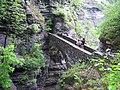 Sentry Bridge, Watkins Glen State Park, New York,.jpg