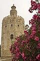 Seville (18553545902).jpg