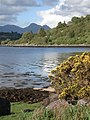 Sgurr Dhomhnuill and Loch Sunart - geograph.org.uk - 440605.jpg
