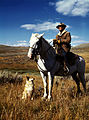 Shepherd with horse and dog, Madison County, Montana fsac.1a35022u.jpg