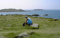 Shipman Head Down, Bryher, with Gweal and Scilly Rock - geograph.org.uk - 1592276.jpg