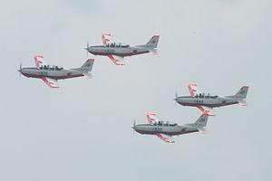 11th Flight Training Wing (JASDF) - 11th Wing Fuji T-7s